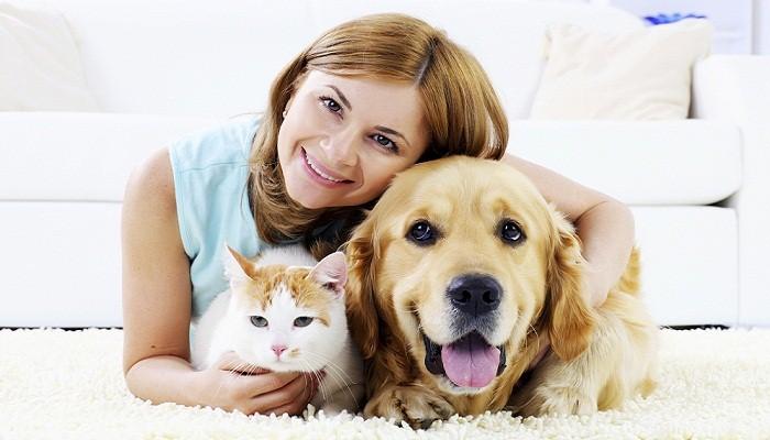 Evcil Hayvan Bakıcısı