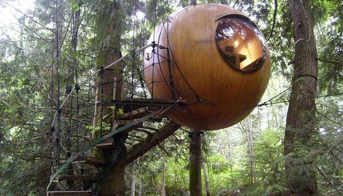 Özgür Ruh Küreler - Vancouver Adası