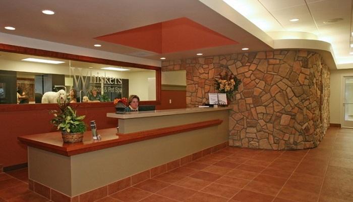 Whiskers Resort&Pet Spa - Grand Rapids/Michigan