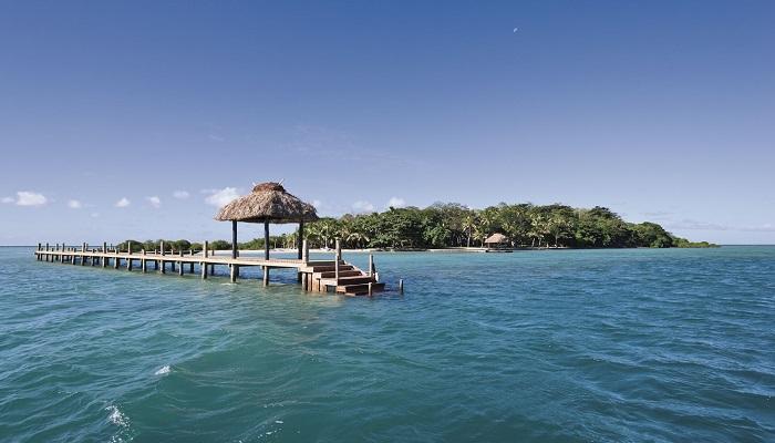 Dolphin Island - Viti Levu/Fiji