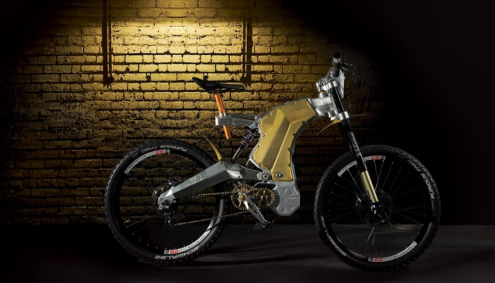 Terminus E-Bike Royal Edition