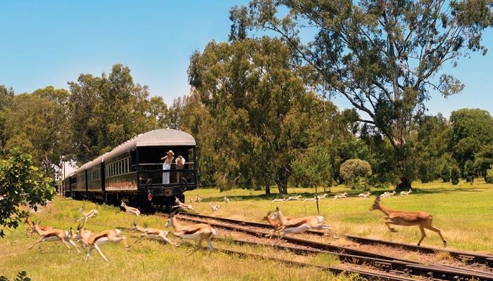 Rovos Rail - Cape Town'dan Darüesselam'a