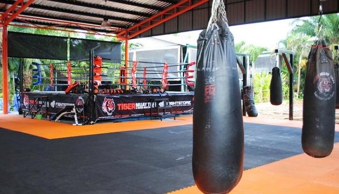 Tiger Muay Thai Spor Salonu - Tayland