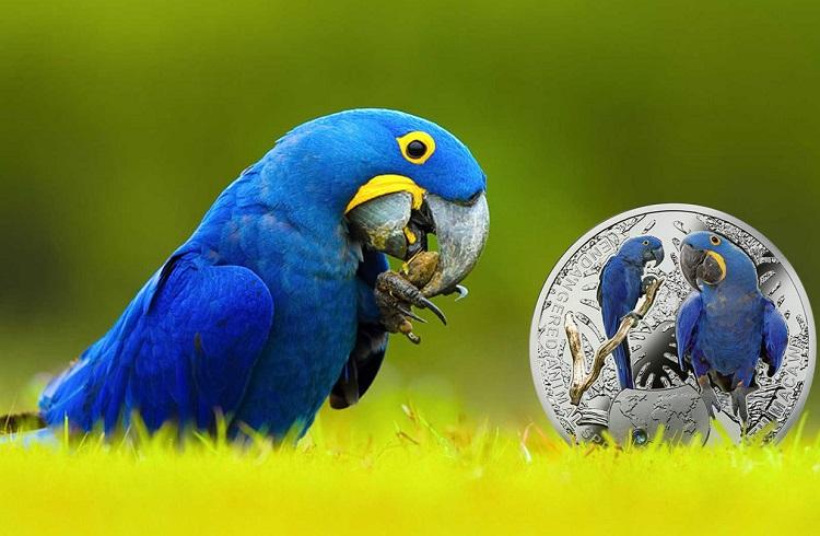 Dünyanın En Pahalı Papağanı
