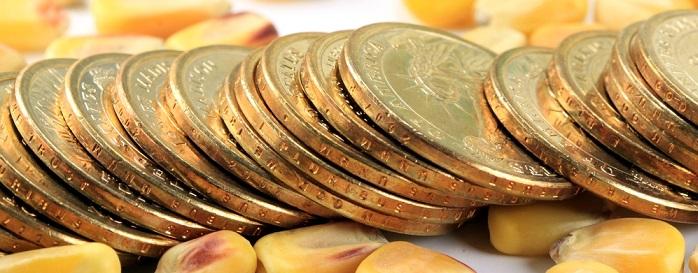 Forex Piyasasında Emtia Yatırımı Nasıl Yapılır?