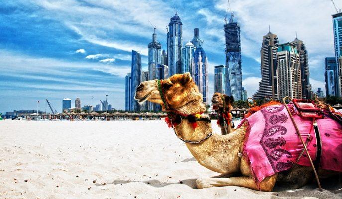 Dubai'nin Yatırım İçin Cennet Olduğunu Kanıtlayan 11 Sebep