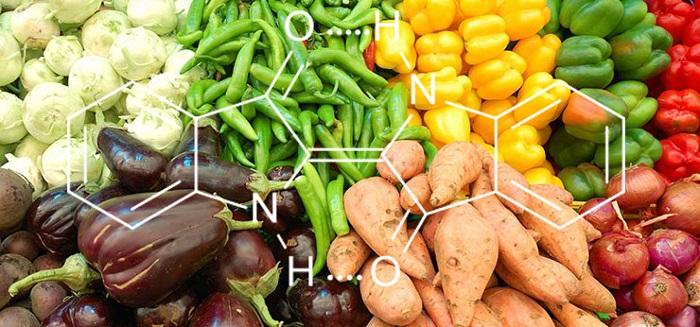 Gıda Kimyageri