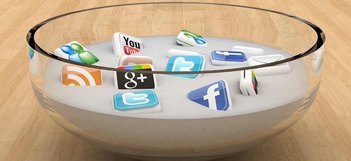 Sosyal Platform Çeşitliliği