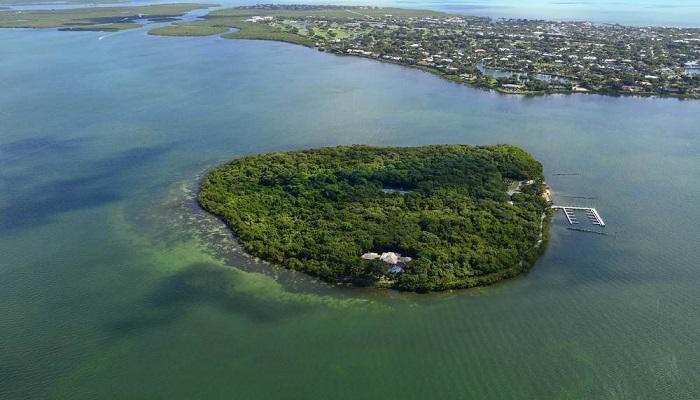 Ada Satın Almak