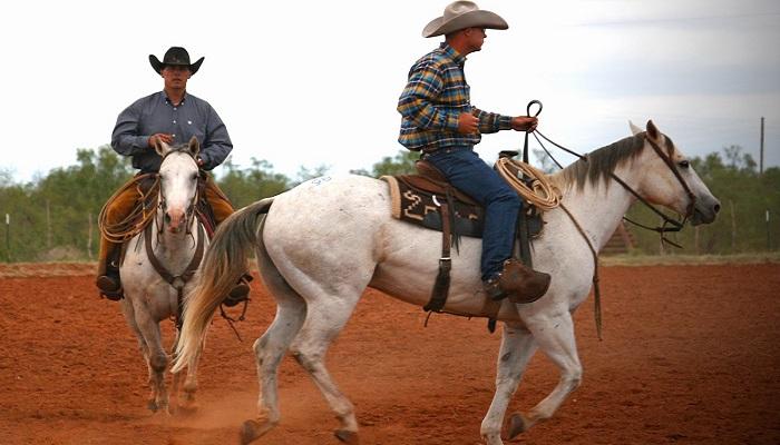 The Waggoner Ranch Yeni Sahibini Bekliyor