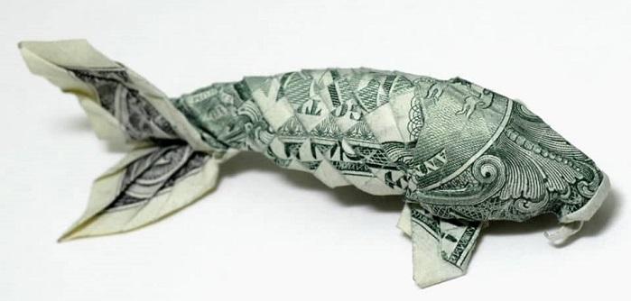 Balık Üretim Çiftliği Kurarak Ne Kadar Para Kazanılır?
