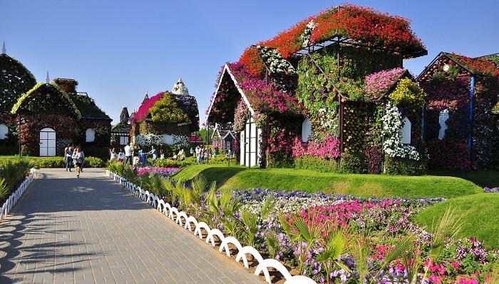 Dubai Miracle Garden'de Gezintiye Çıkmalısınız