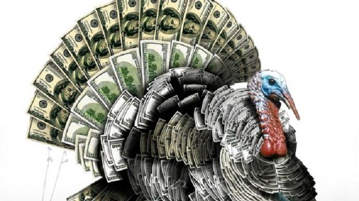 Tavuk ve Hindi Yetiştiriciliği Yaparak Ne Kadar Para Kazanılır?