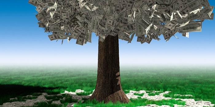 Bahçıvanlık Yaparak Ne Kadar Para Kazanılır?