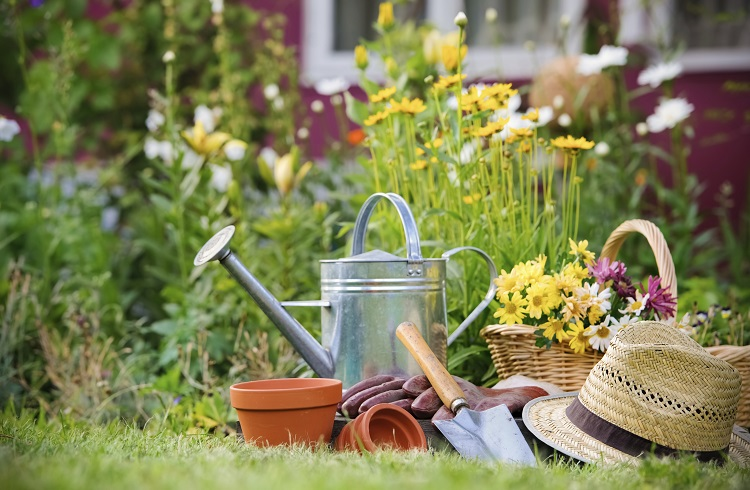 Bahçıvanlık Yaparak Para Kazanmak