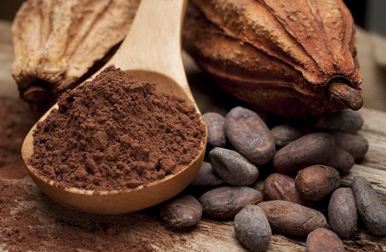 Forex Piyasasında Kakao İşlemleri
