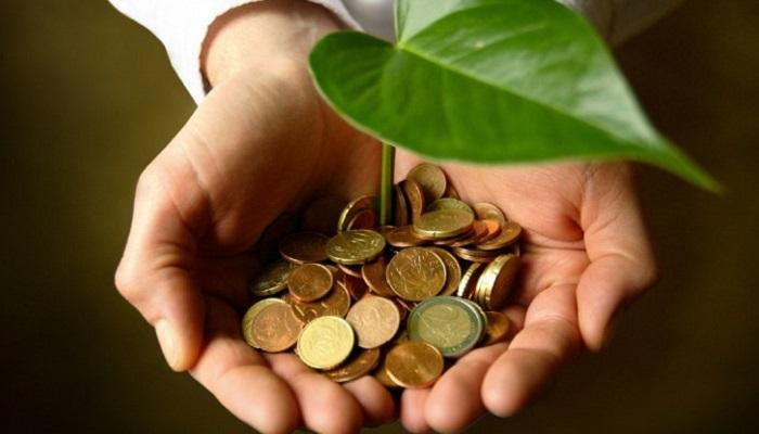 Seracılık Yaparak Ne Kadar Para Kazanılır?