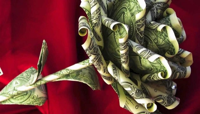 Süs Bitkisi Yetiştiriciliği Yaparak Ne Kadar Para Kazanılır?