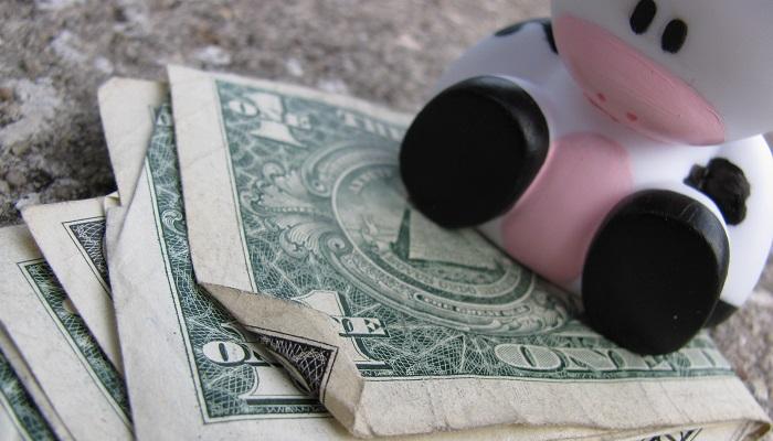 Süt ve Süt Ürünleri Satarak Ne Kadar Para Kazanılır?