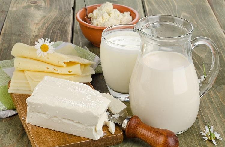 Süt ve Süt Ürünleri Satarak Para Kazanmak