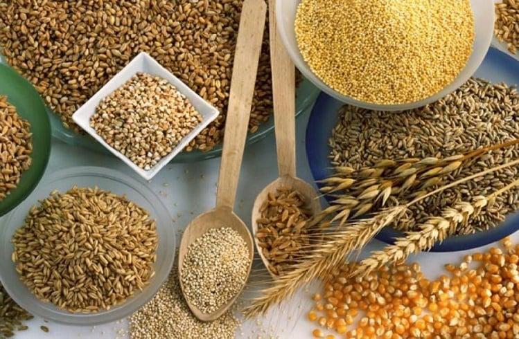 Tarımsal Emtia Ticareti Nasıl Yapılır? Tarımsal Emtialardan Para Kazanmak için Öneriler