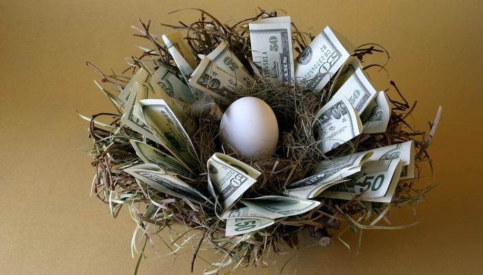 Yumurta Üretimi Yaparak Ne Kadar Para Kazanılır?