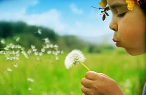 Doğa ile İç İçe Yaşamayı Sevenler için 9 Muhteşem İş Fikri