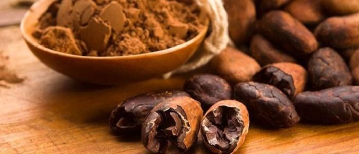 Forex Piyasasında Kakao Ticareti Nasıl Yapılır?