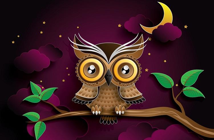 Gece Kuşlarının Daha Zeki Olduğunu Gösteren 5 İşaret