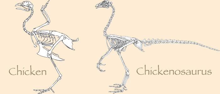 Dinozorlara Nasıl Yeniden Hayat Verilebilecek?