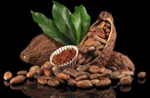 Kakao Ticareti Nasıl Yapılır? Kakaodan Para Kazanmak için Öneriler
