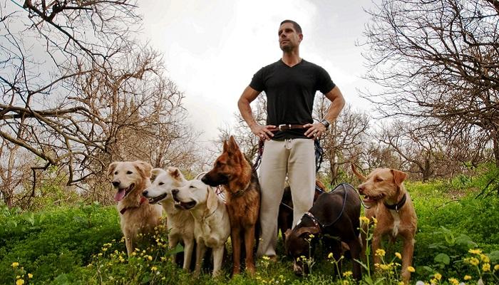 Köpek Eğitmenliği Yaparak Para Kazanmak