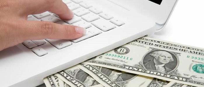 Pamuk Yatırımı Yaparak Ne Kadar Para Kazanılır?