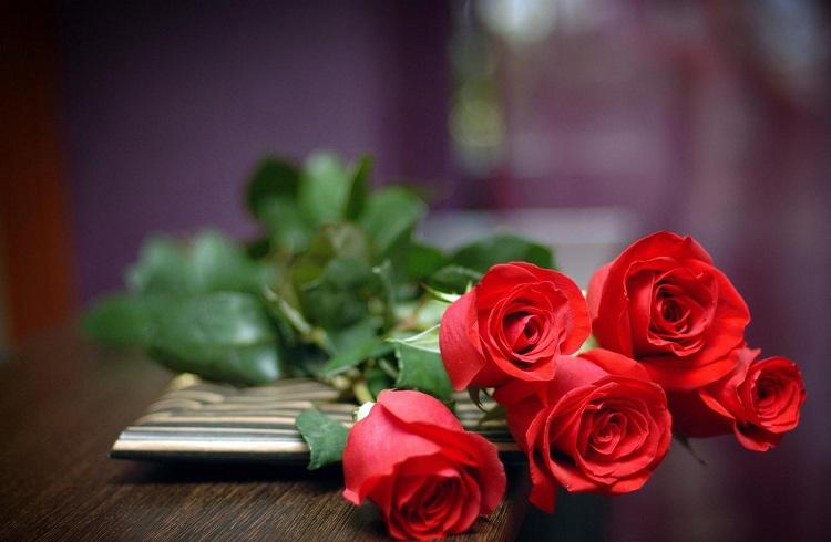 Türkiye'nin Sevgililer Günü için Çiçek İhracatı Ne Kadar Oldu?