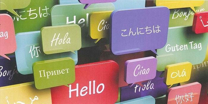 Dil Öğrenirsiniz!