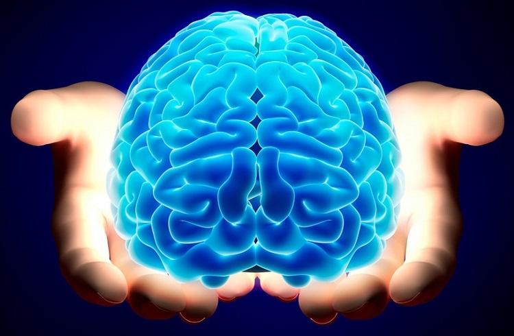Daha İyi Çalışan Bir Beyin için Her Gün Yapılması Gerekenler
