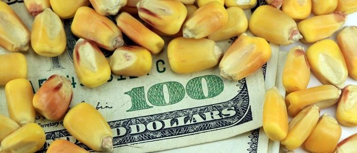 Emtia Yatırımı Yaparak Ne Kadar Para Kazanılır?