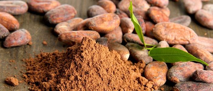 Kakao Yatırımı Yaparak Para Kazanmak