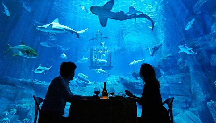 Aquarium de Paris'in Misafirlerine Sunmuş Olduğu Muhteşem Olanaklar