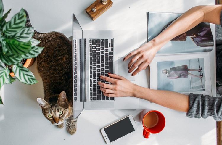 Bilgisayar Başında Para Kazanmanızı Sağlayacak 9 Kolay Yöntem