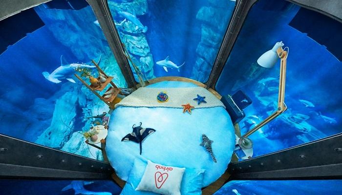 """Dünyanın İlk Devasa Akvaryumu: """"Aquarium de Paris"""""""