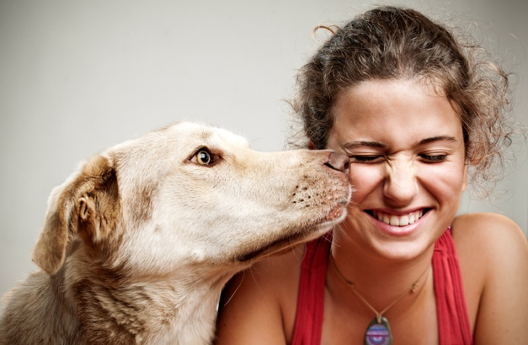 Evcil Hayvan Sahibi Olmanın 6 Önemli Faydası
