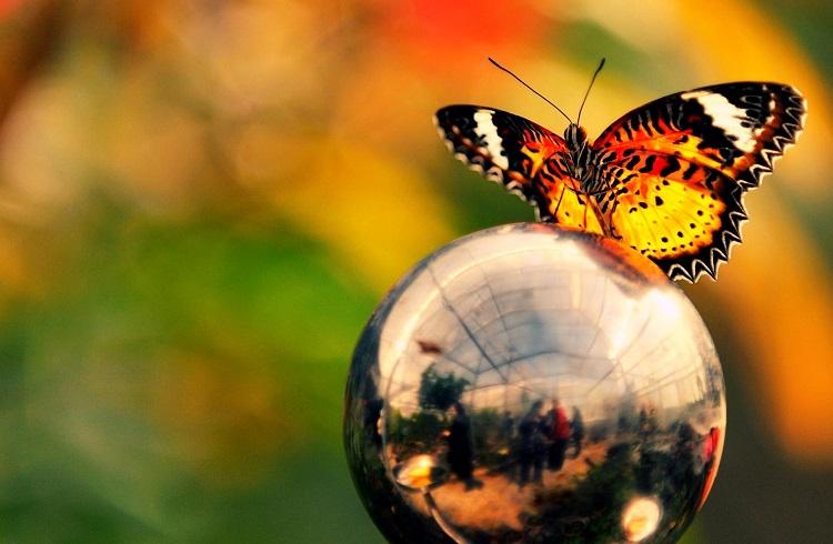 Hayatınıza Nezaket ve Güzellik Katmak için Edinmeniz Gereken Alışkanlıklar