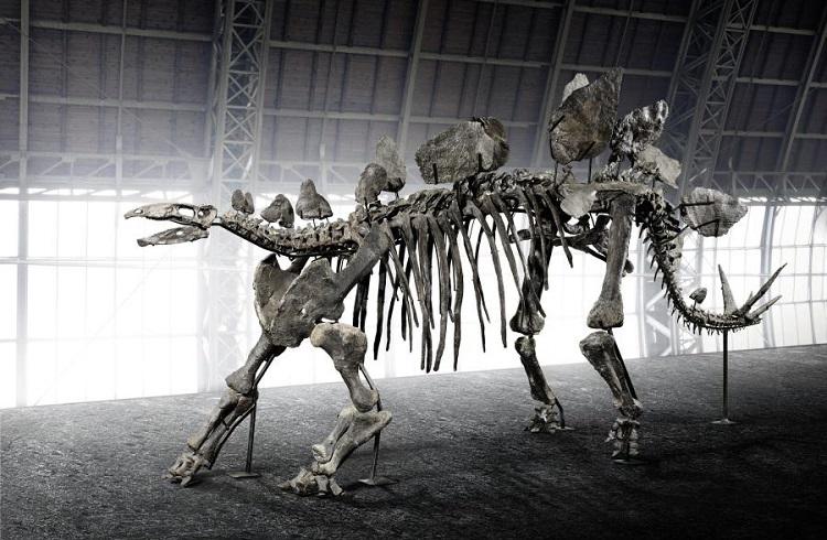 150 Milyon Yıllık Dinozor İskeleti Müzayedede Sahiplerini Arıyor!