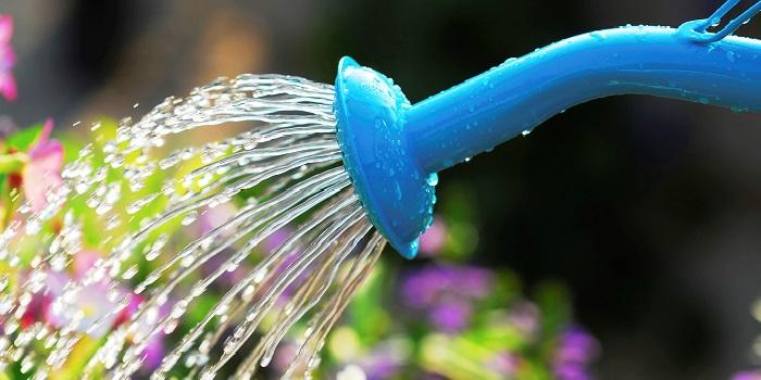 Mutfak ve Bahçedeki Su Tüketimine Dikkat Edin!