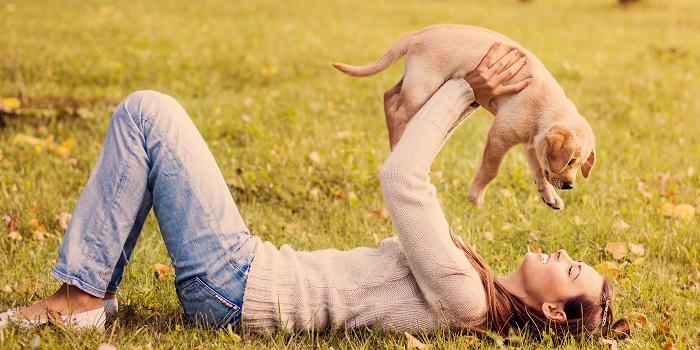 Arkadaşlarınızın Evcil Hayvanlarıyla İlgilenin!