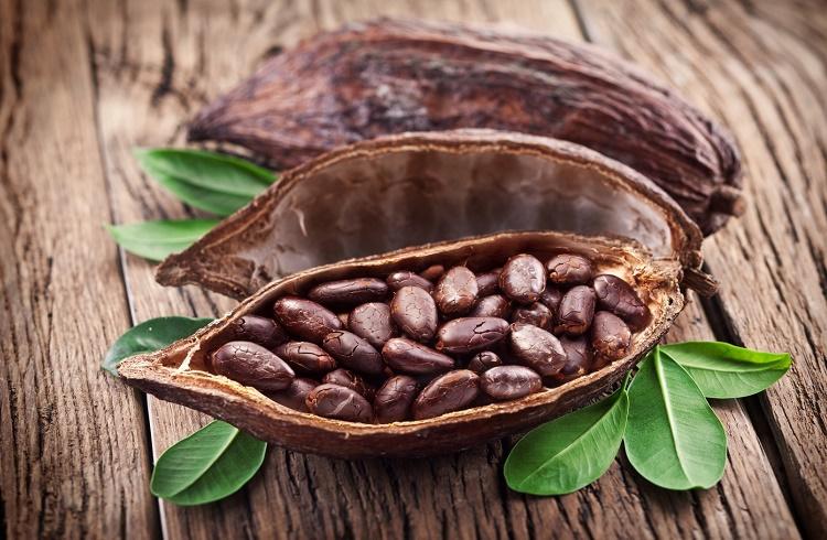 Kakao Yatırımı için Forex Piyasası Mantıklı mı?