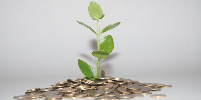 Diğer Yatırım Hesabı Seçenekleri Nelerdir?
