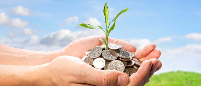 Forex Tarımsal Emtia Yatırımı Yaparak Beklentilerimi Karşılayabilir miyim?