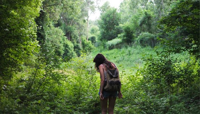 Yürüyüşe Çıkın